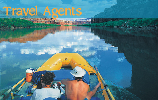 Travel Agent Information