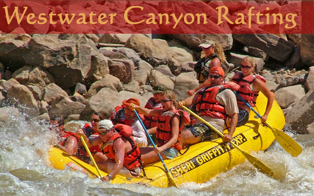 Westwater Canyon Rafting on the Colorado River