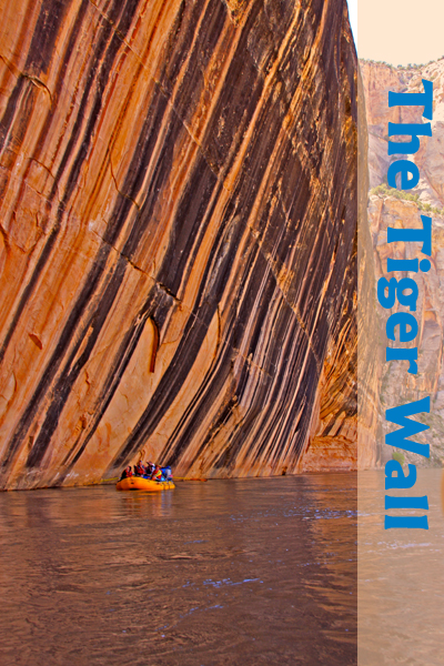 Tiger Wall on Yampa River